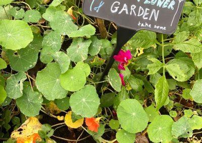 flower_garden